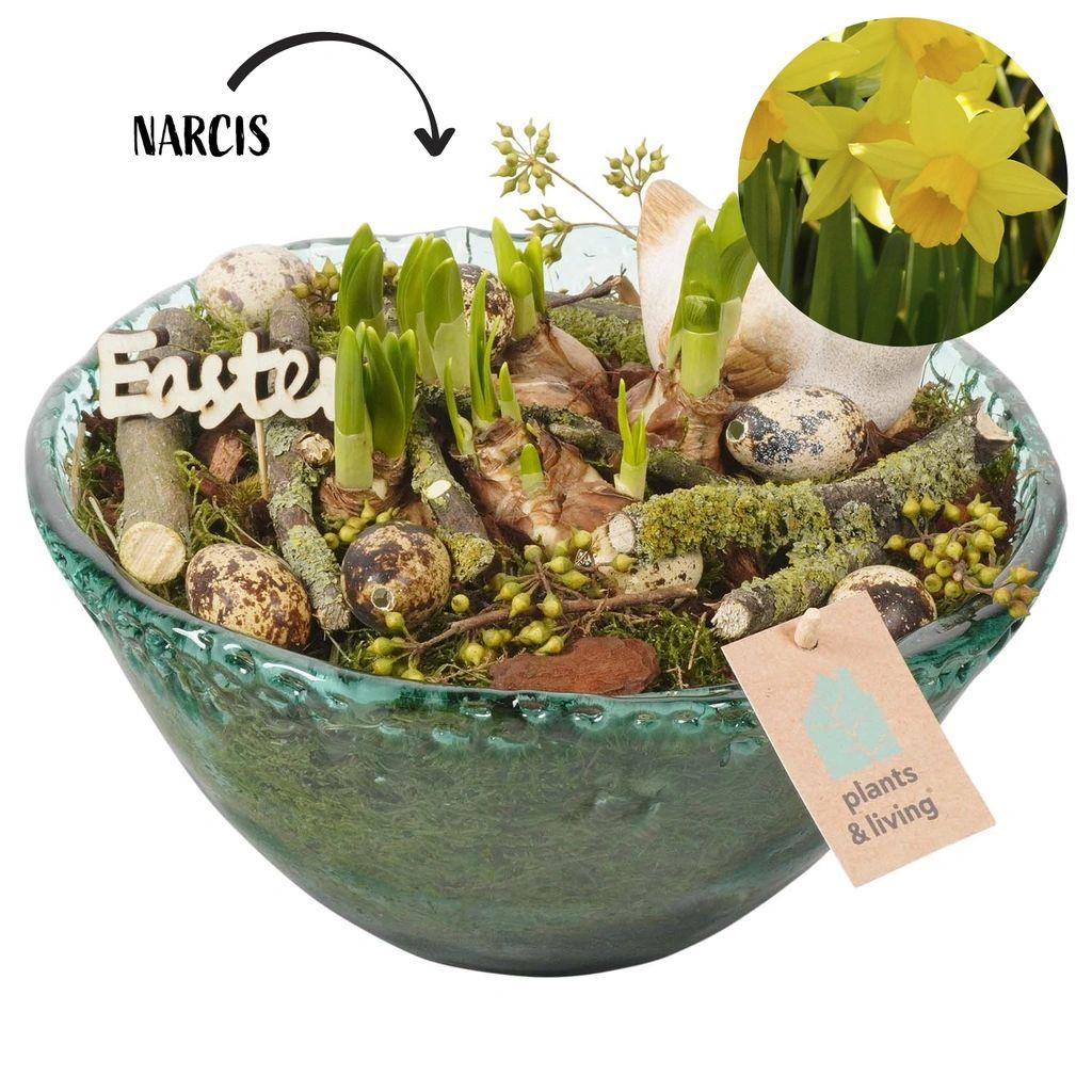 Plantenarrangement Lynn | 26 cm